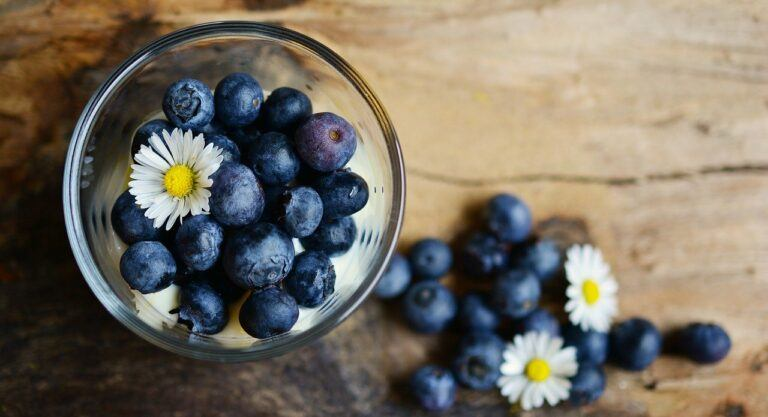 Layman's Terms for the Role Antioxidants Play in Your Health